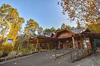 丹波悠遊の森画像10