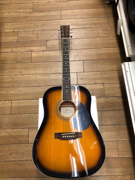 HONEY BEE アコースティックギター W-15/TS ソフトケース