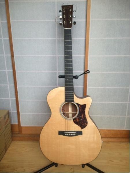 マーティン エレアコギター GPCPA4
